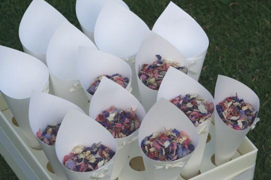 Confetti Trays